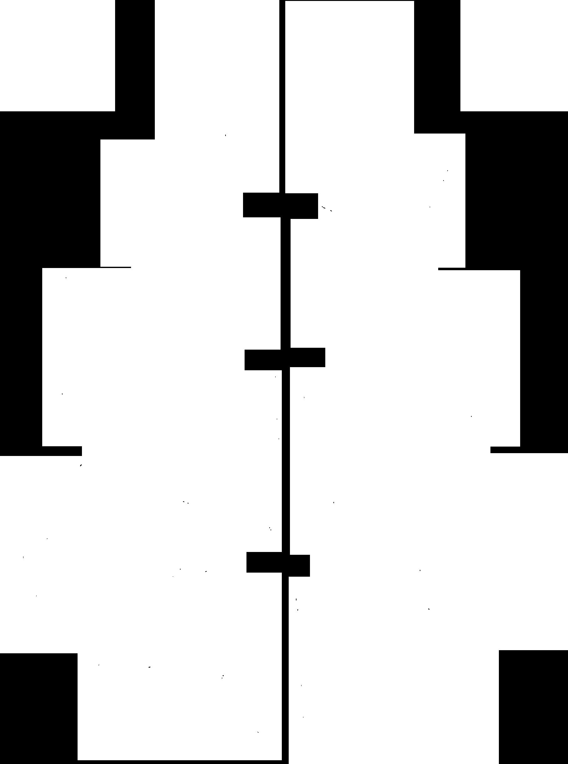 pinesandcoal – finest print production